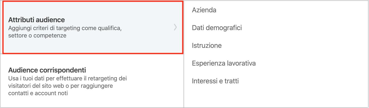 LinkedIn Avdertising - Audience