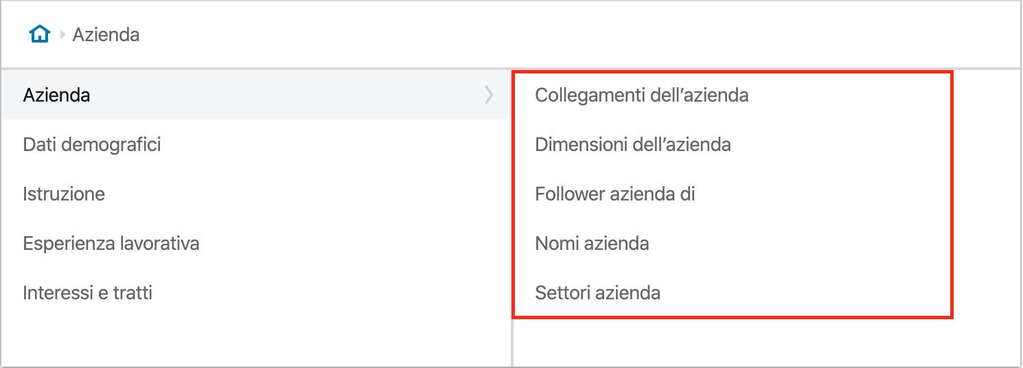 LinkedIn Avdertising - Azienda